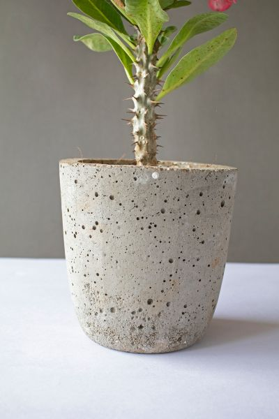Tall Cylindrical Concrete Planter 2 Art And Soil