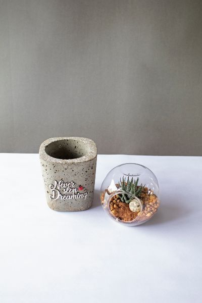 Cylindrical Concrete Planter 4 Art And Soil