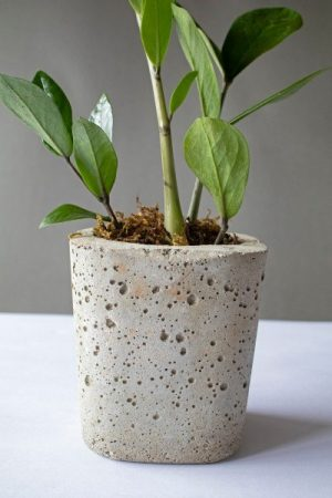 Small Hand Painted Cylindrical Concrete Planter 2 Art And Soil